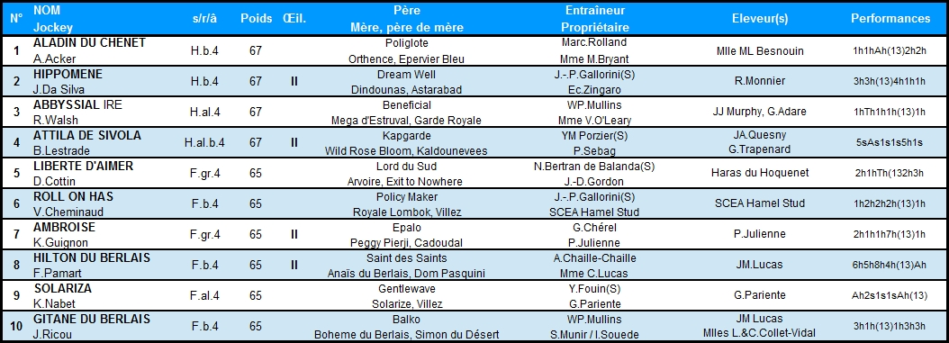 Prix Alain du Breil 2014 (H., Gr.I, Auteuil) 8-06 : Roll on has DuBreil2014