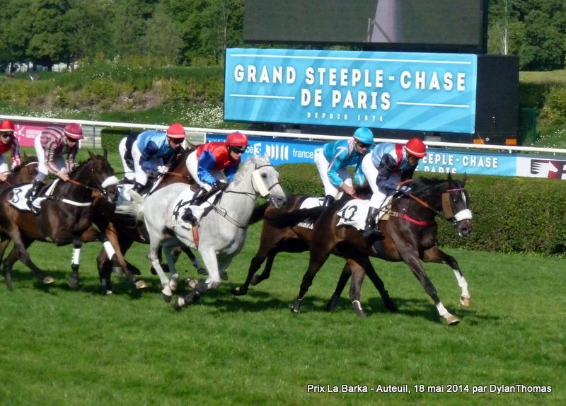 Prix La Barka 2014 (H., Gr.II, Auteuil) 18-05 : Thousand stars LaBarka1