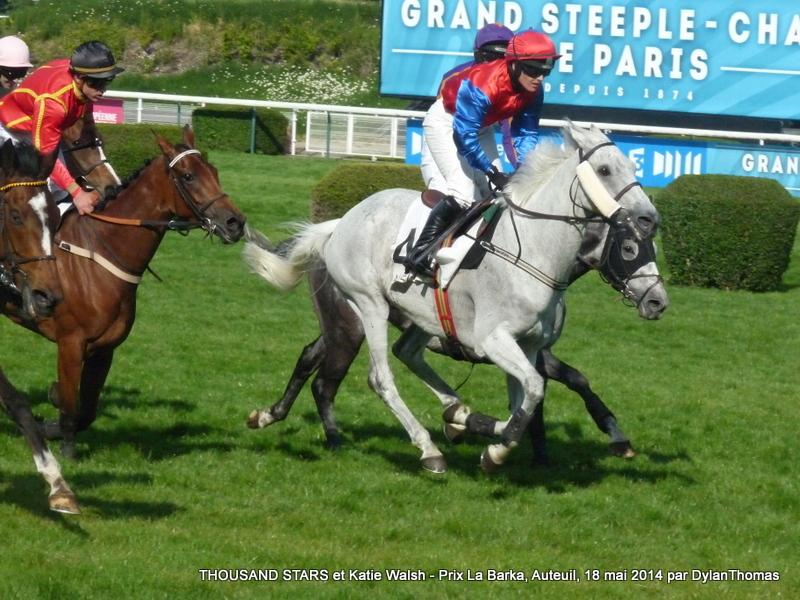 Prix La Barka 2014 (H., Gr.II, Auteuil) 18-05 : Thousand stars Thousand2