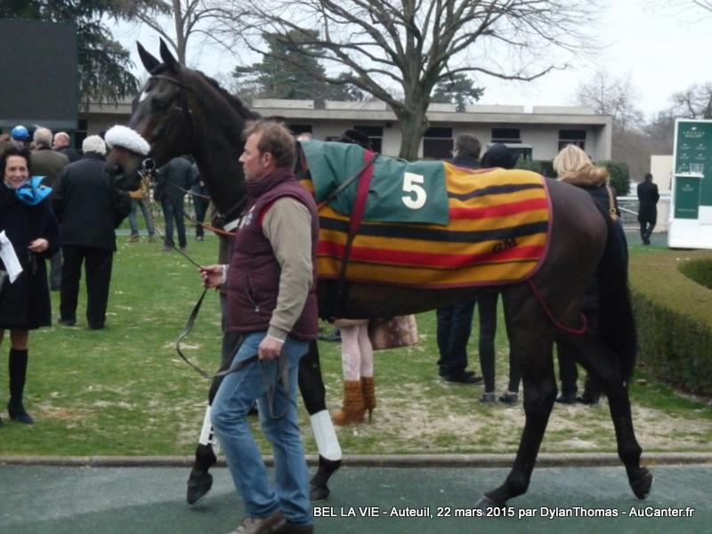 Photos Auteuil 22/03/2015 BLV1