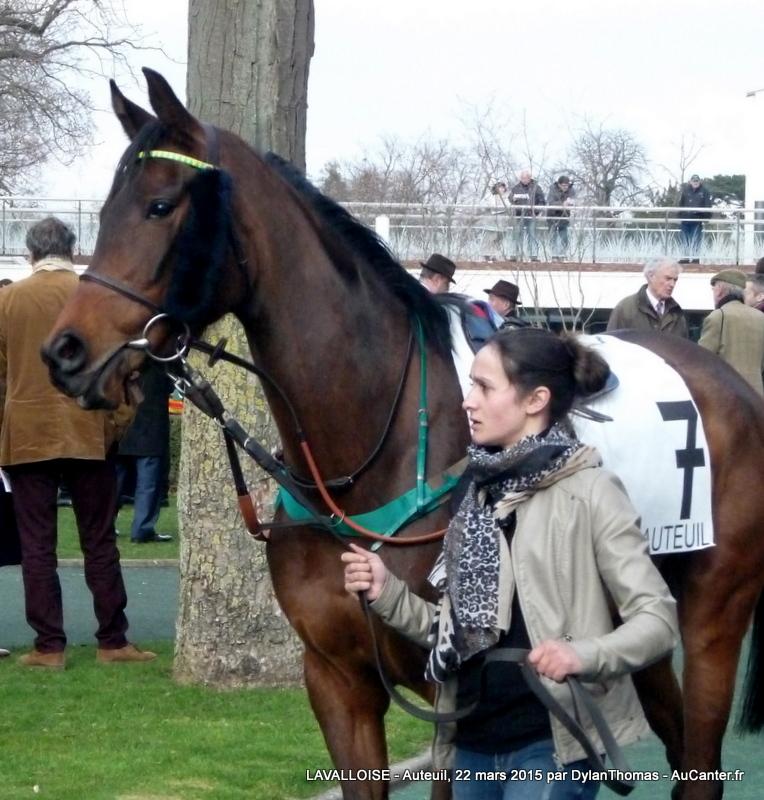 Photos Auteuil 22/03/2015 Lavalloise