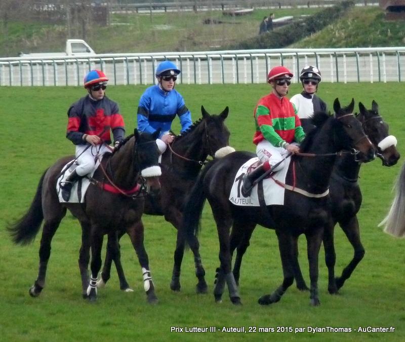 Photos Auteuil 22/03/2015 Lutteur