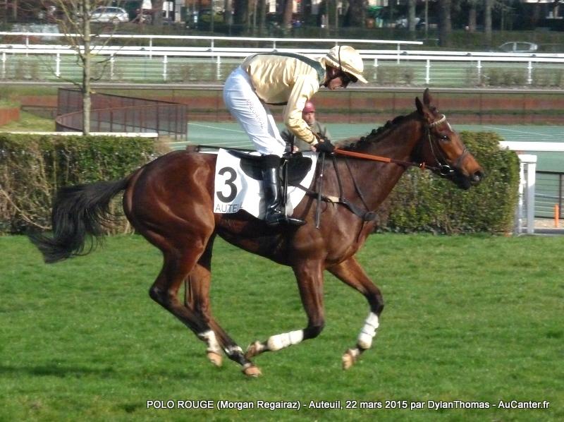 Photos Auteuil 22/03/2015 Polo7