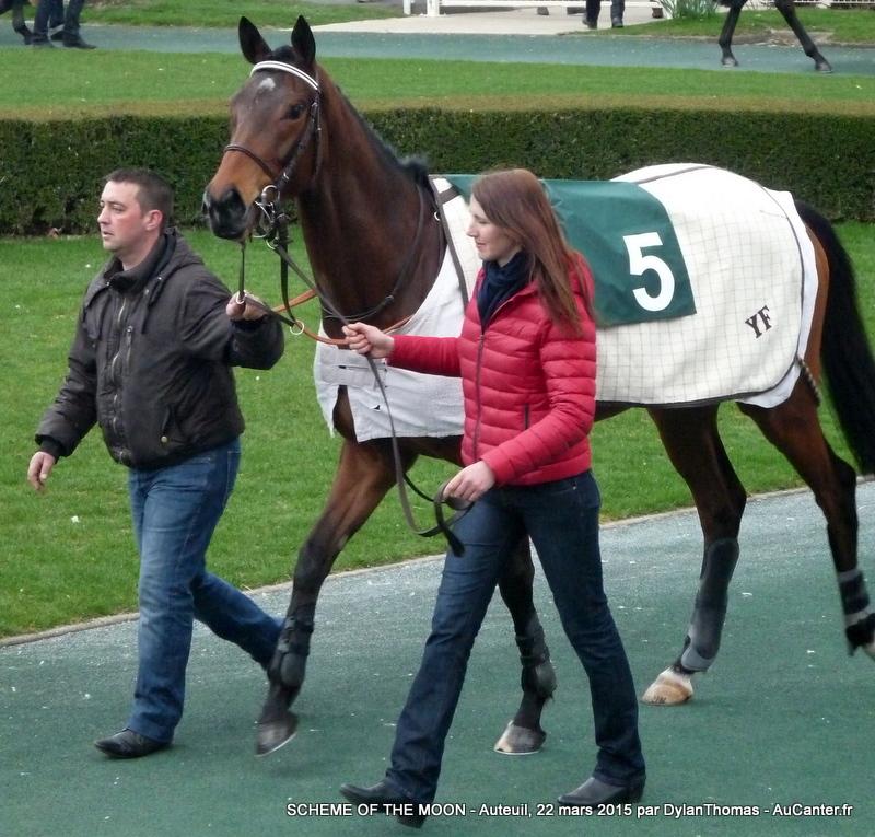 Photos Auteuil 22/03/2015 Scheme1